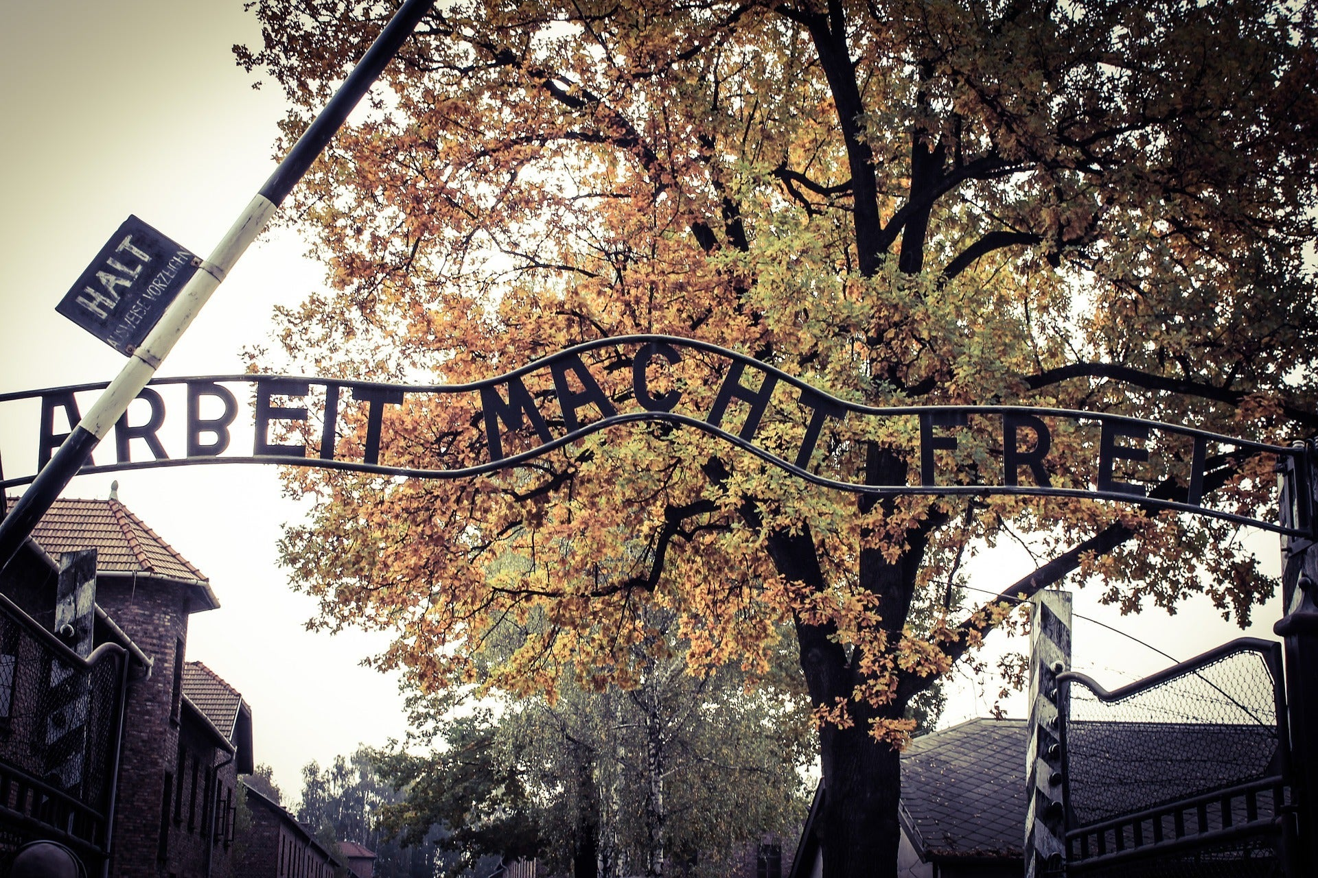 Memento of holocaust